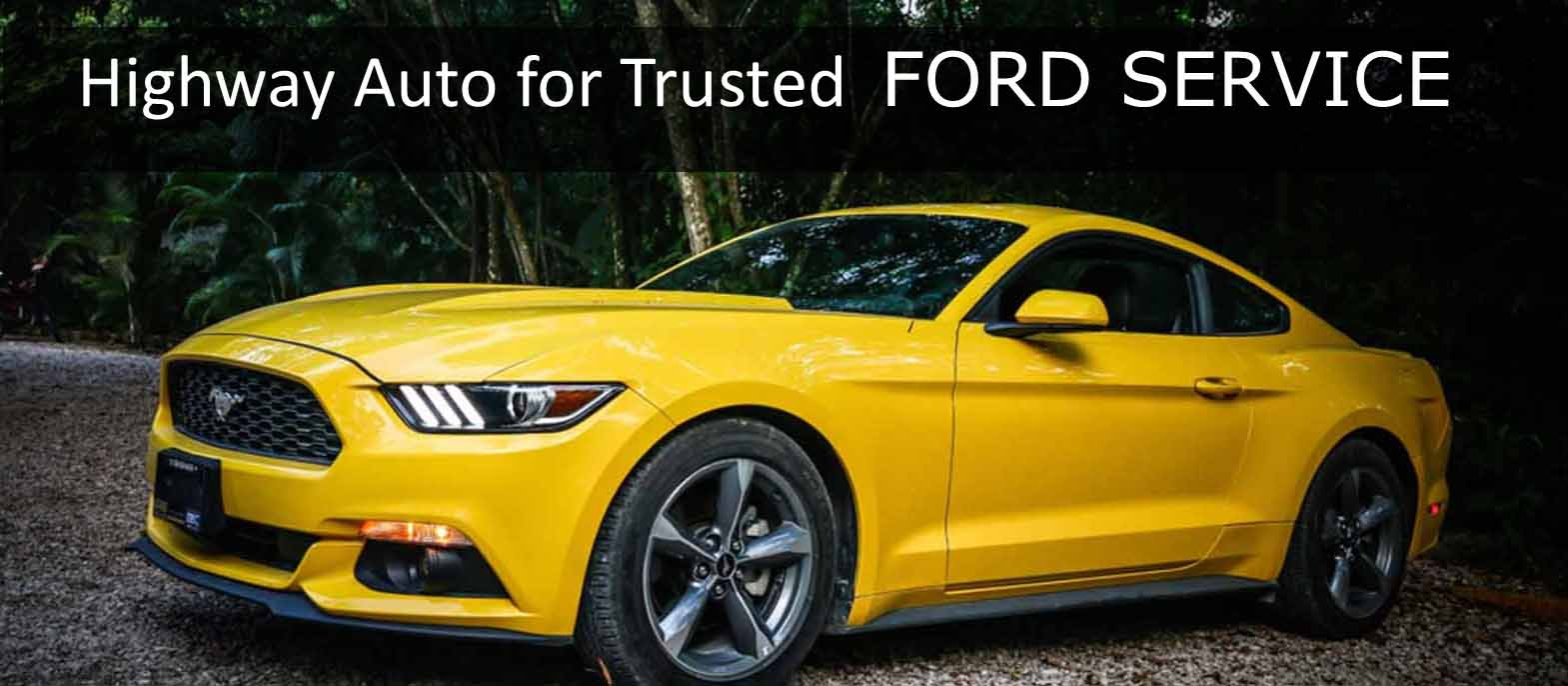 Ford servicing & Repairs